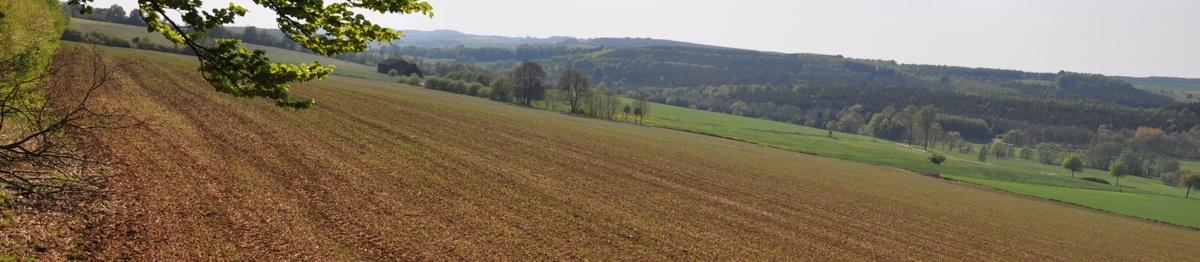 DSC_3201_Landwirtschaft_1200_262